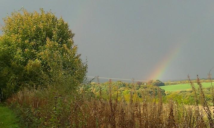 Rainbow, photo: Amanda Ogden