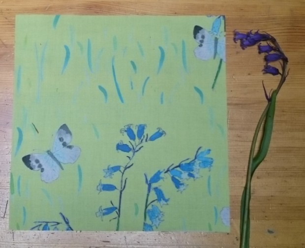 Butterflies and Bluebells.JPG