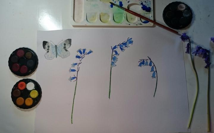 Painting_bluebells[1]