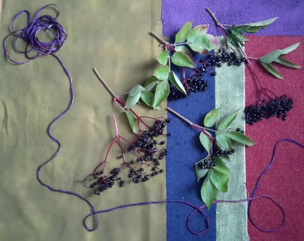 Colour inspiration for September, elderberries