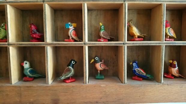 Indian birds, inspiration.jpg